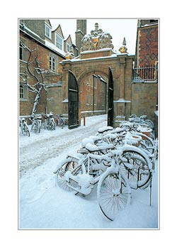 LCCC3-C-0090-College-Bicycles